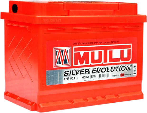 Multi Silver Evolution 55 450.jpg1