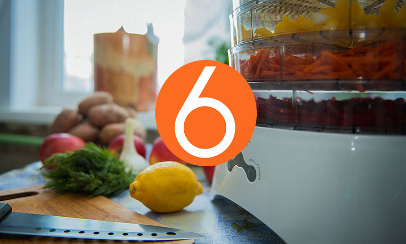 топ 6 лучших сушилок продуктов