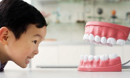 какие бывают зубные протезы - виды