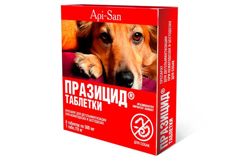 Таблетки от глистов для собак