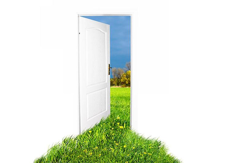 parametri vibora vhodnoi dveri