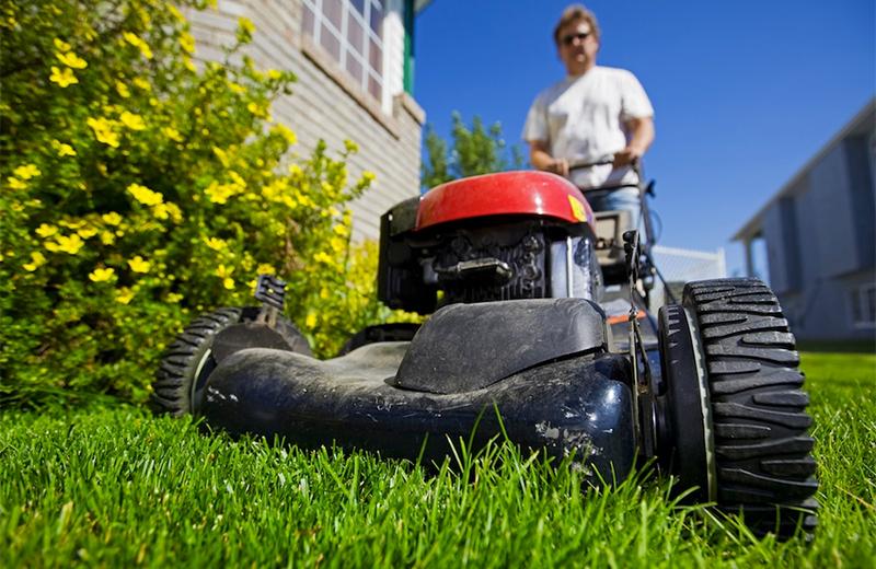 Принцип работы и устройство газонокосилки