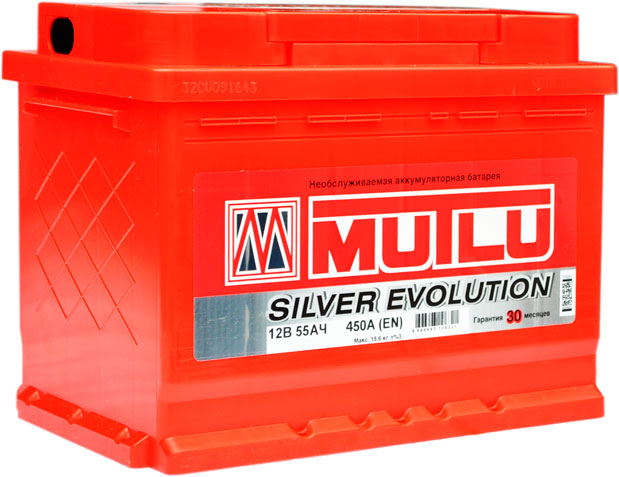 Multi Silver Evolution 55 450.jpg1