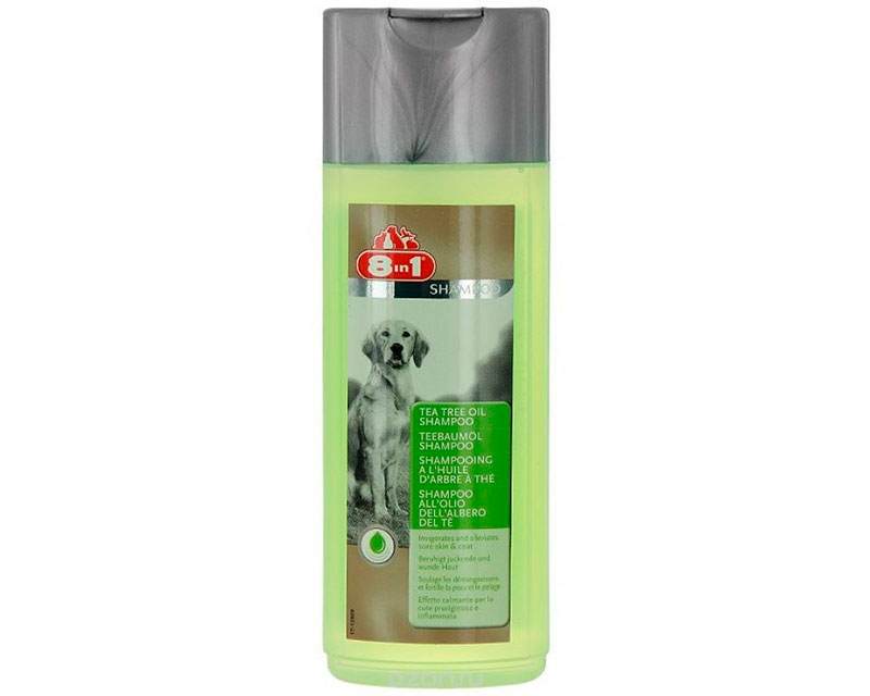 8in1 Tea Tree oil Shampoo