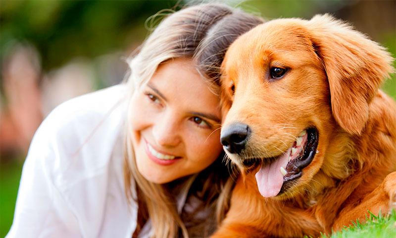 Милпразон от глистов для собак современный и эффективный