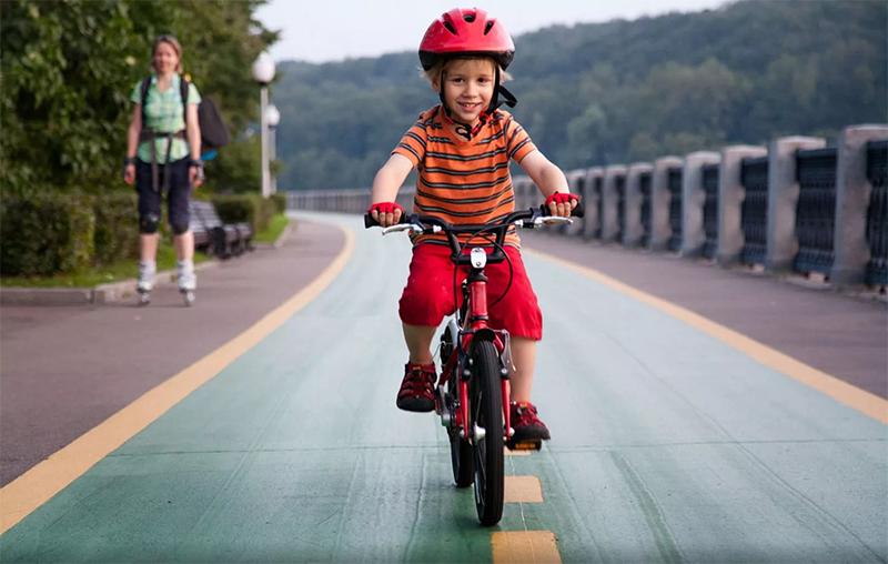 Принцип работы и устройство детского велосипеда