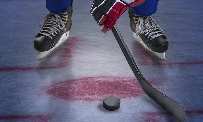Стоимость хоккейных клюшек
