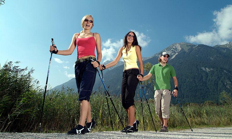 Как выбрать палки для скандинавской ходьбы (инструкция) рейтинг лучших фирм