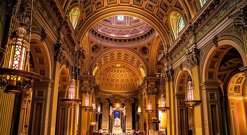 целая собор святого павла в риме фото сумах, посадка уход